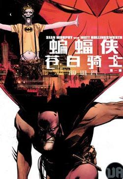 蝙蝠侠-苍白骑士的诅咒的封面图