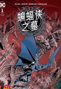 蝙蝠侠之墓的封面图