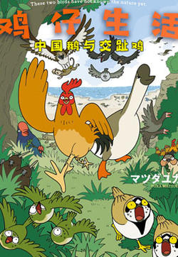 鸡仔生活的封面图