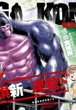 PingKong的封面图