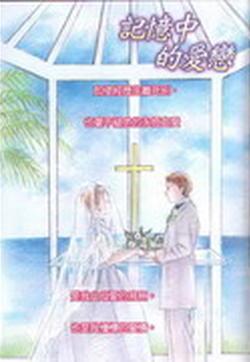 记忆中的爱恋的封面图
