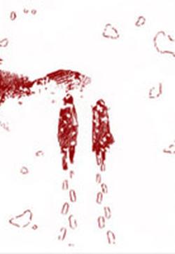 雪之日的封面图