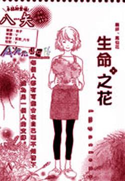 生命之花的封面图