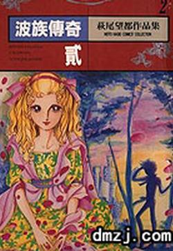 波族传奇的封面图