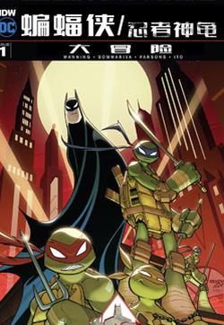 蝙蝠侠/忍者神龟:2016大冒险的封面图
