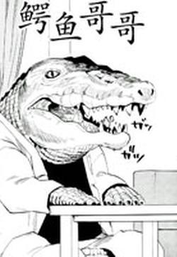 鳄鱼哥哥的封面图
