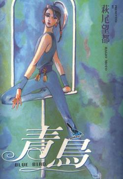 青鸟的封面图