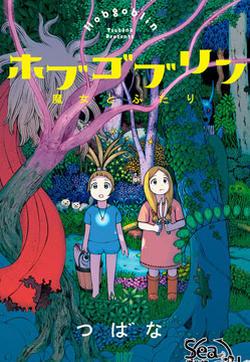 Hobgoblin 魔女和妖精的封面图