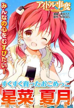 偶像事变 Idol Incidents的封面图