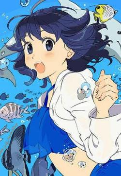 缓里与海有时还有海豚的封面图