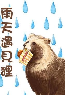 雨天遇见狸的封面图