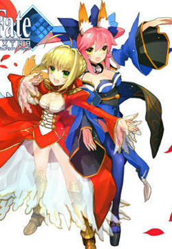 Fate/EXTRA画集的封面