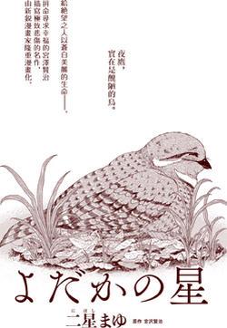 夜鹰之星的封面图