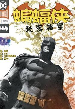 蝙蝠侠:秘密档案的封面图