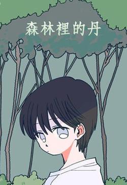 森林里的丹的封面图