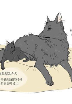 狗狗貓貓漫畫封面