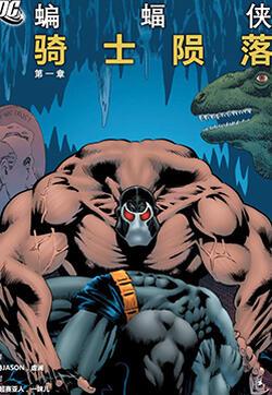蝙蝠侠:骑士陨落的封面图