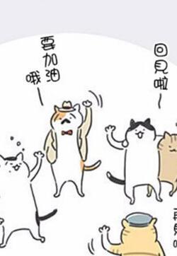 看板猫的封面图