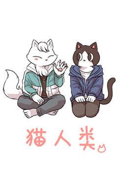 猫人类的封面图