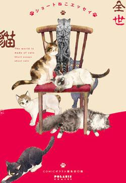 全世猫的封面图