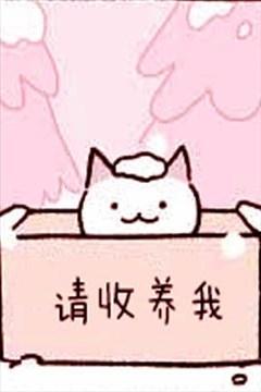 不可思议的猫咪 小九的封面图