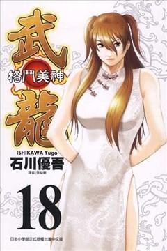 格斗美神武龙的封面图