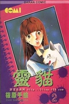 灵猫的封面图