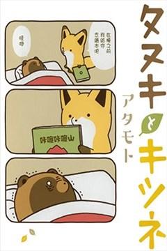 狐与狸的封面图