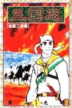 三国志的封面图