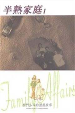 半熟家庭(Family Affairs)的封面图
