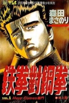 铁拳对钢拳(无赖布鲁斯)的封面图