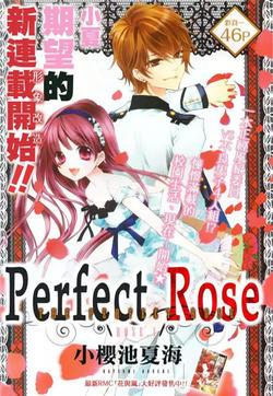 完美蔷薇Perfect Rose(蔷薇♥恋爱预感)的封面图