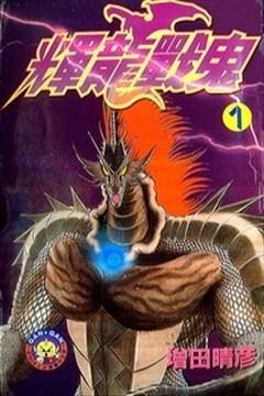 辉龙战鬼的封面图