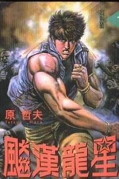 飚汉龙星(猛龙星)的封面