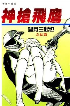 神枪飞鹰的封面图