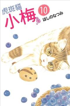 虎斑猫小梅的封面图