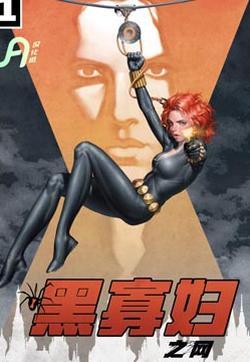 黑寡妇之网的封面图