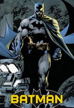 蝙蝠侠的封面图